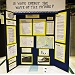 science fair project displayed on an tri-fold display board