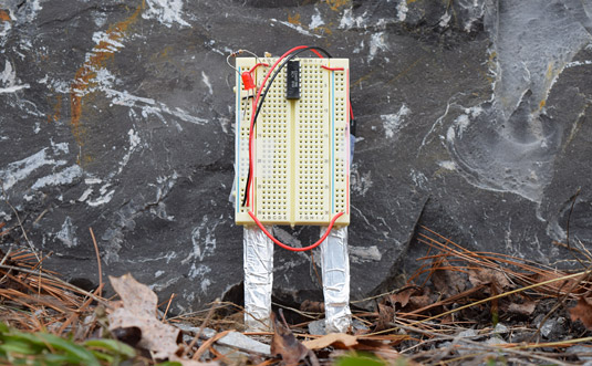 A breadboard is wired with two aluminum legs that are inserted into the ground
