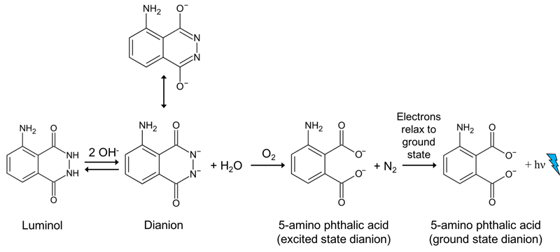 reaction (simplified).
