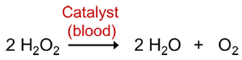 Decomposition reaction of hydrogen peroxide catalyzed with blood