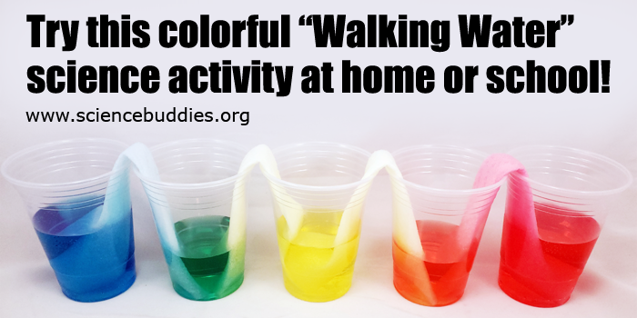 Colorful Walking Water Science Activity