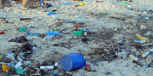 Plastic Pollution and World Oceans Day