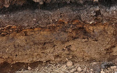 soil layer thumbnail