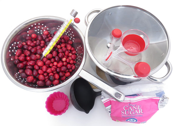 Materials needed for the cranberry sauce science activity.