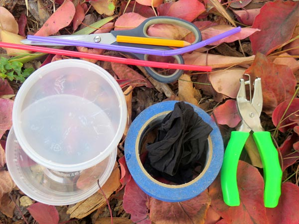 Materials needed to create a bug-vacuum and study bug biodiversity.