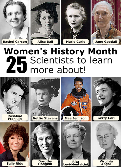 Images of 12 of the 25 women scientists featured with their names indicated