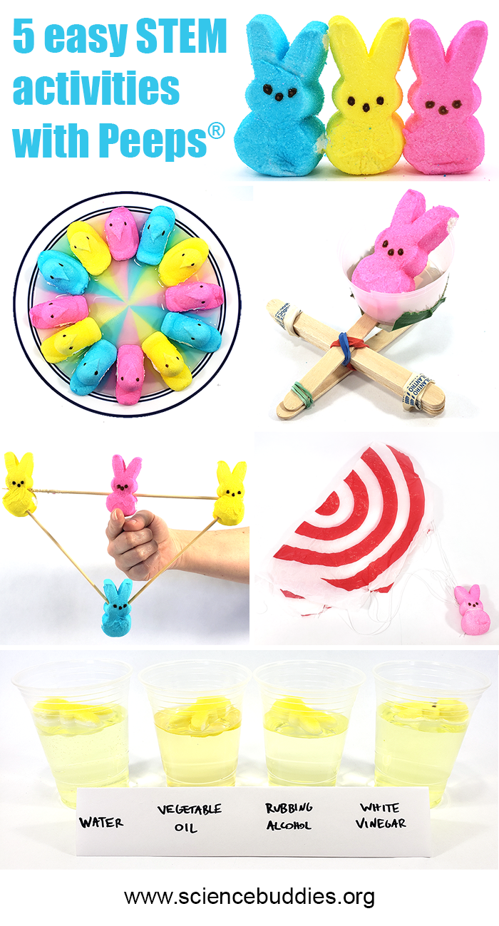 Five science activities you can do with marshmallow Peeps!