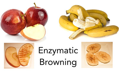 enzymatic browning of fruit thumbnail