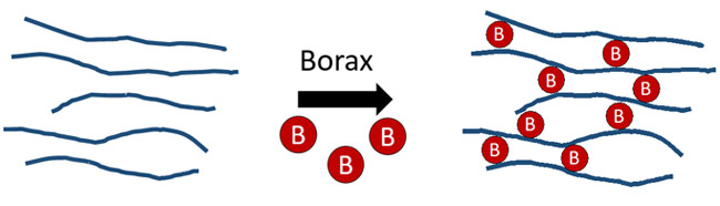 Drawing of borax molecules forming crosslinks between long, skinny polymer chains