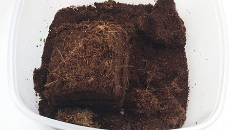 A cube of compressed fiber-like brown material surrounded by darker, looser ground like material.