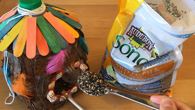 bird house food for bird feeder science project