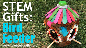 Make and Give STEM: A bird feeder from recycled and craft materials