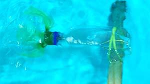 making plastic bottle submarine without fins