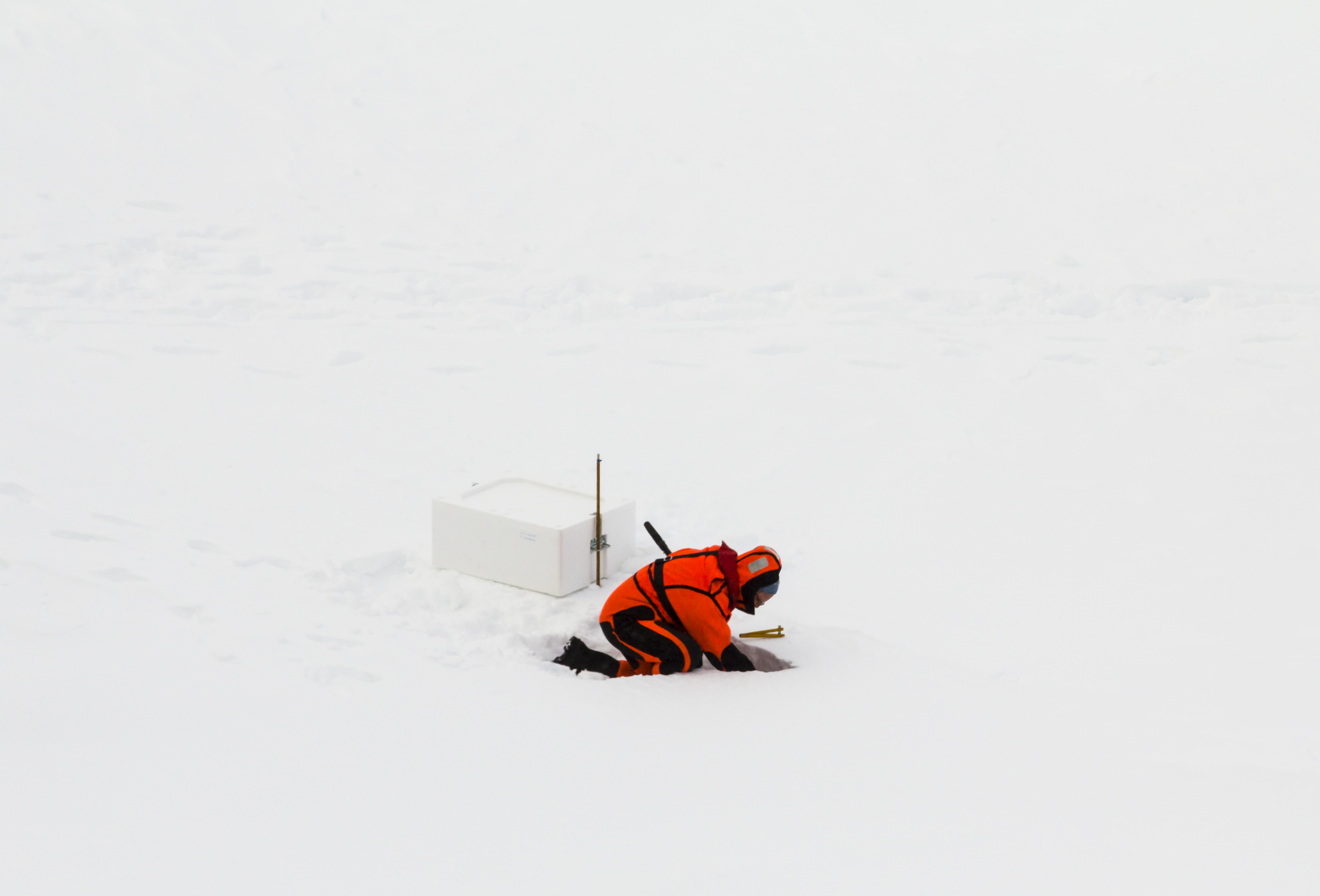 processing Antarctic ice core samples