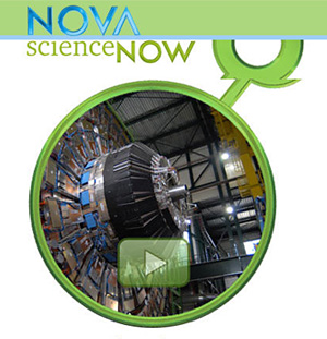 Watch pbs.org NOVA particle physics career video