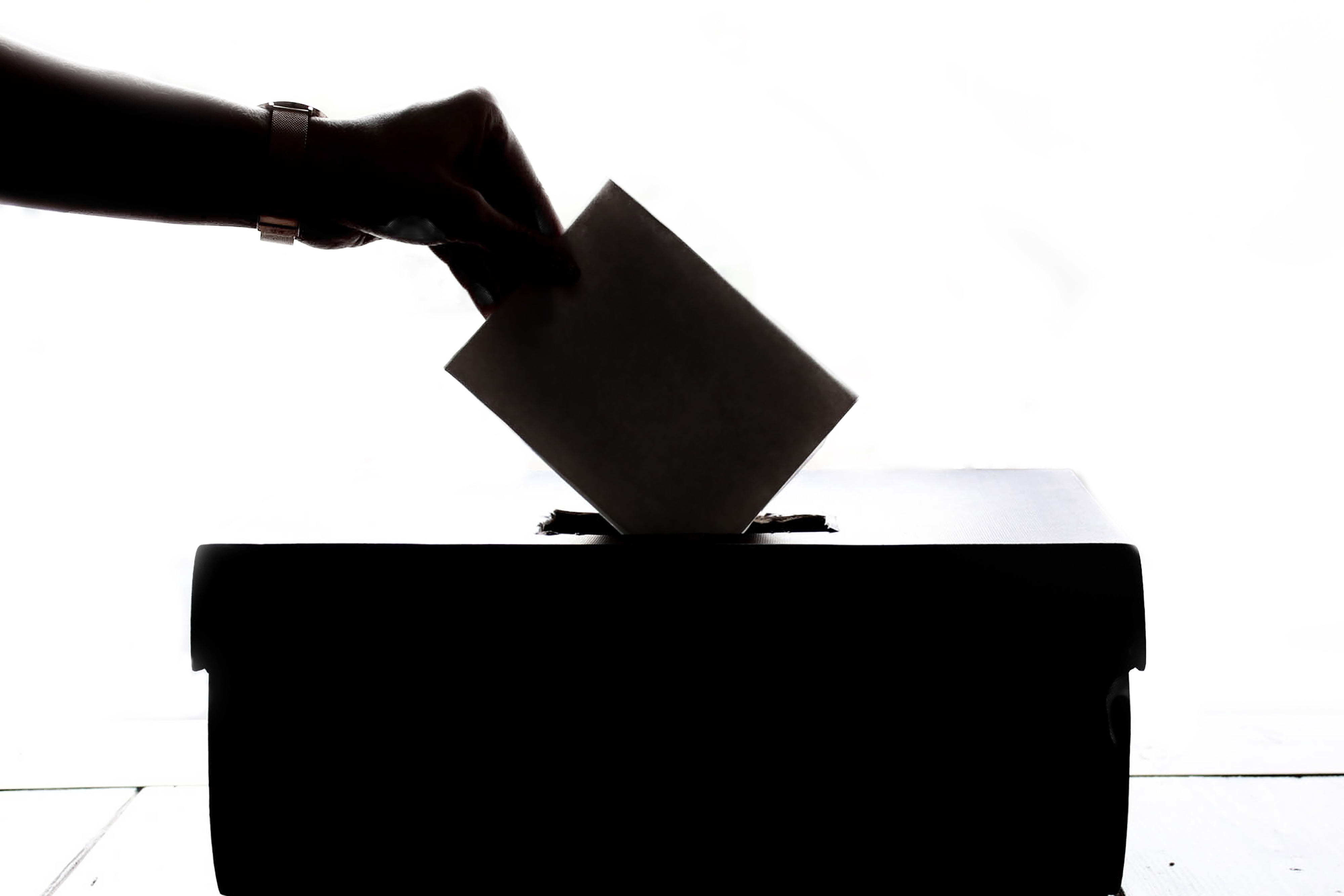 African lady voting