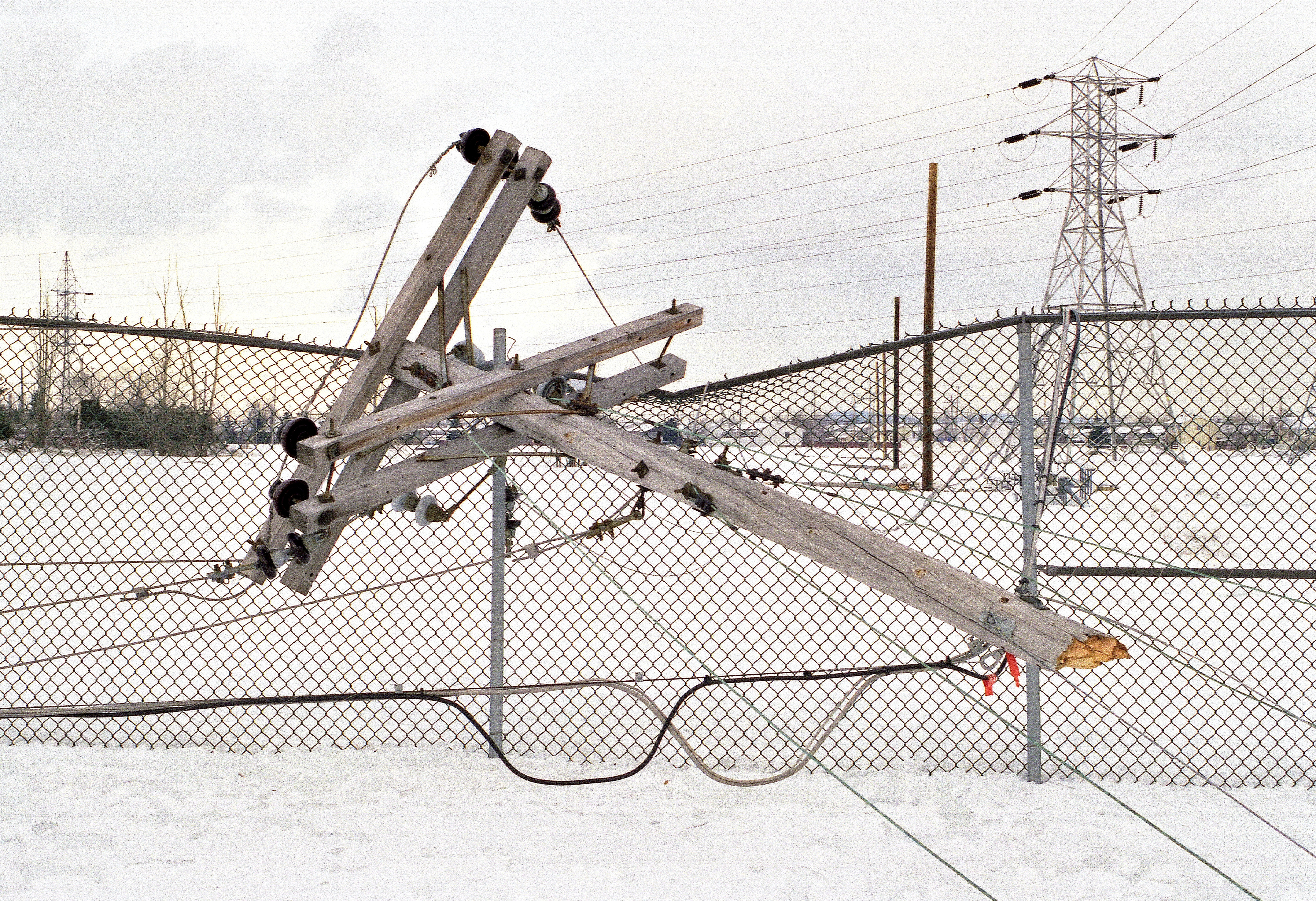 power lines downed by ice storm