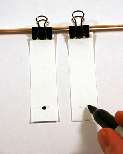 Person using a marker to place a black dot on the origin line of two paper chromatography strips