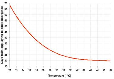 the effect of temperature on blowfly View this abstract online effect of temperature on the rate of ageing: an experimental study of the blowfly calliphora stygia plos one 2013 8(9):e73781 (issn.