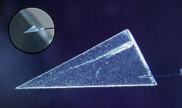 comet particle in aerogel