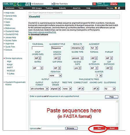Genomics Science Project ClustalW2 tool screenshot