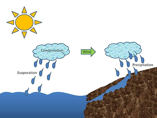 Environmental Engineering Science Project drawing of the water cycle showing the Sun warming an ocean. Water droplets are rising from the ocean's surface and forming clouds, which are blown inland over brown land. The clouds are shown releasing their rain, which falls and runs into a river returning to the ocean.