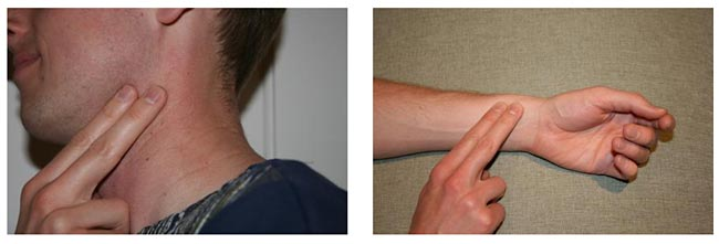 Video and Computer Games Science Project photo showing how to take a pulse at the carotid and radial arteries