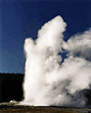 Photo of the Old Faithful geyser erupting with water and steam