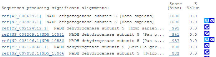 On the NCBI website the BLAST query returns a list of proteins in the database that match the queried protein