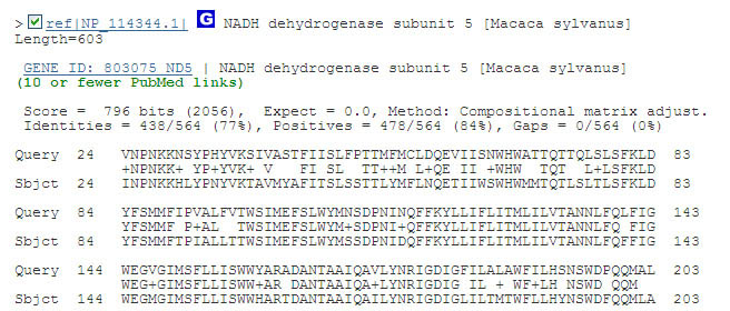 The BLAST program on the NCBI website returns protein sequences from its database that match a query sequence