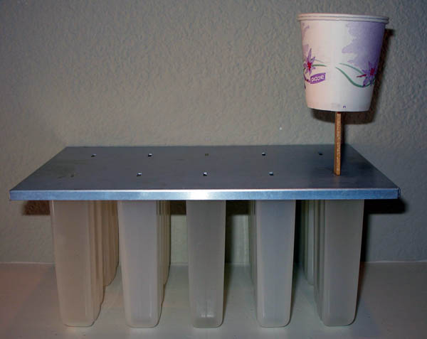 This photo shows a Popsicle stick with two paper cups attached sticking out of a popsicle mold.