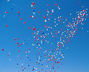 Hundred of balloons float into the sky