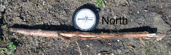This photo shows a compass and a straight stick side-by-side. The stick is parallel to the compass needle, which is pointing north.