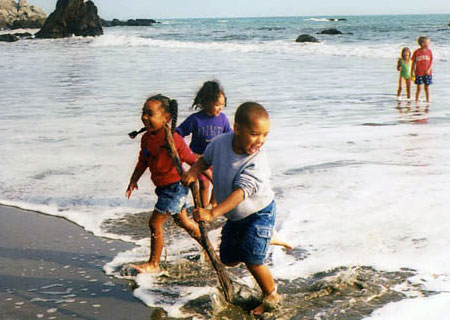 Ocean Science science fair project This photo shows children running away from waves at a beach.