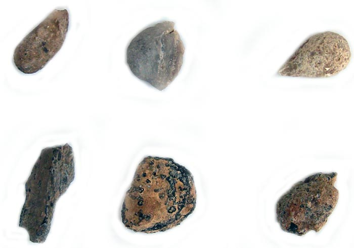 Geology science project <B>Figure 3.</B> This photo shows six geodes turned face down, so that only their outsides are visible.