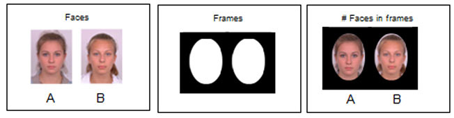 Human Behavior science project <B>Figure 4.</B> The composite image (A) has a 'halo effect' derived from the hair of the component faces. The black oval frames hide the halo effect on the composite image. Make four pages like the one on the right, each with a composite face and an individual face that was used to make the composite.