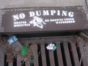 Grated storm drain inlet with litter