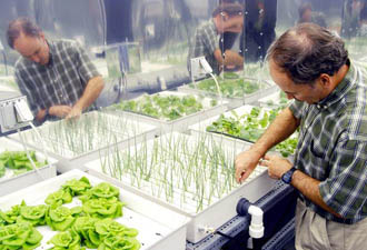NASA hydroponics