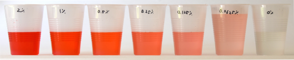 Seven plastic cups filled with a red liquid of decreasing concentrations