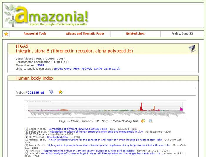 Medical Biotechnology science project Screenshot of the Amazonia database website