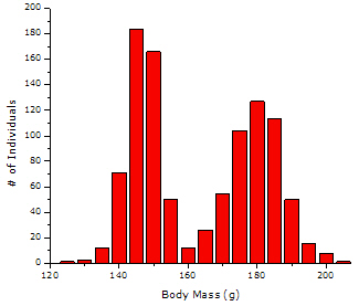 simulated data: bimodal histogram of body mass for a hypothetical population of male and female fish