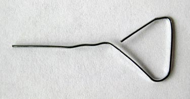 Food Science project Photograph of a paper clip bent to have a triangular end