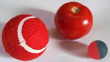 Picture of a tennis ball, tomato, and rubber ball.