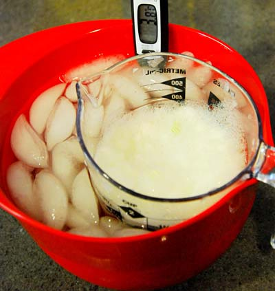 DNA isolation from onions in a cold water bath.