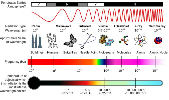 Graph of the electromagnetic spectrum shows wavelengths, images of scaled objects, frequency and temperature