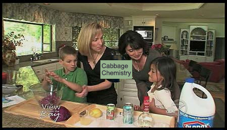Video thumbnail of two women and two children in a kitchen