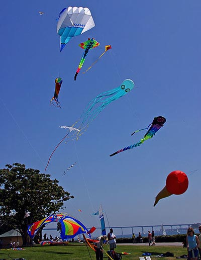 different types of kites flying
