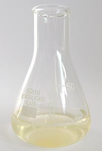 Erlenmeyer flask with 20 mL vitamin C solution.
