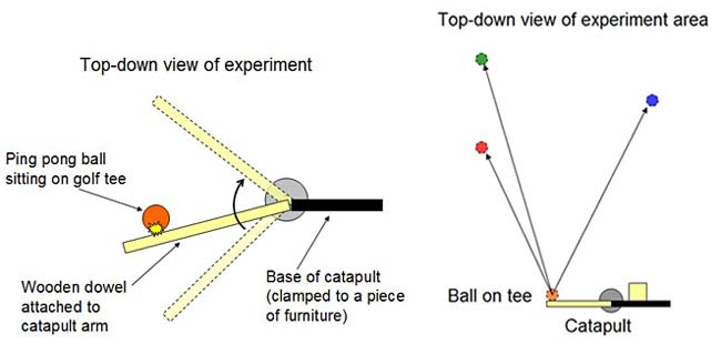 diagram of baseball catapult experiment