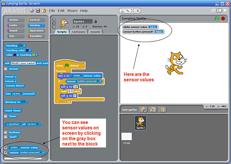 Screenshot of a sprite in the program Scratch